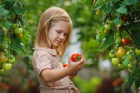 علت بد غذایی کودک یک ساله