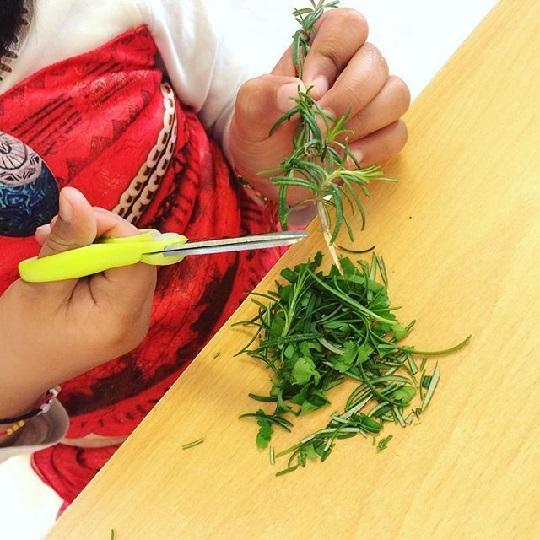 خرد کردن و خوردن سبزیجات